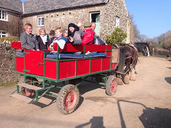 Enjoy a family wagon ride at higher Biddacott Farm.