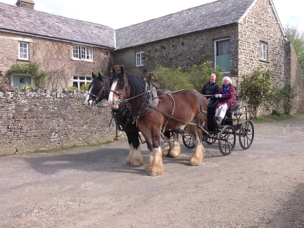 At Higher Biddacott Farm you are in safe hands to start your driving course journey.