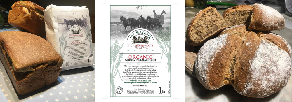 Flour by Horse Power is our homemade flour that is made with the help of our heavey horses here at Higher Biddacott Farm.