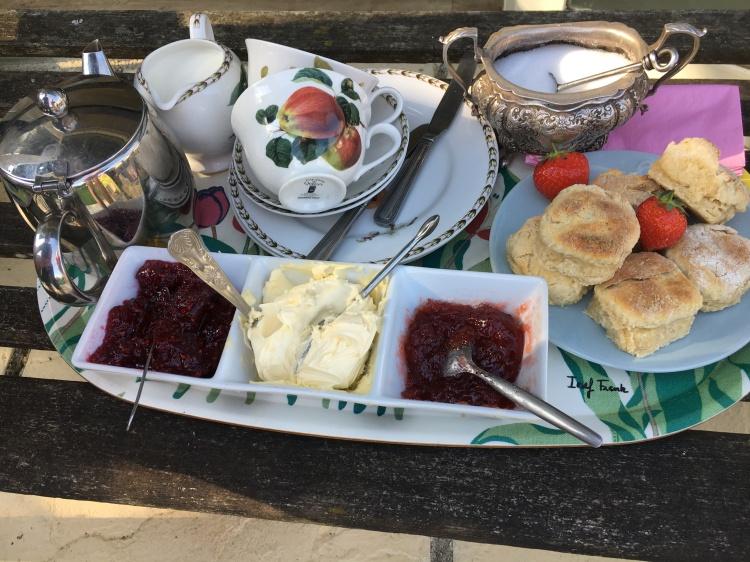 Enjoy a delicious cream tea while relaxing in the garden at Higher Biddacott Farm.